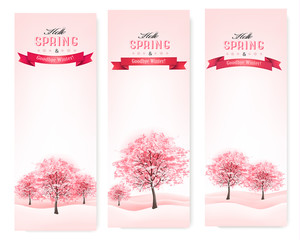 Three spring banners with blossoming sakura trees. Vector.