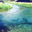 Spring water - 63346313