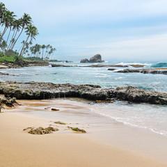 coast of the ocean