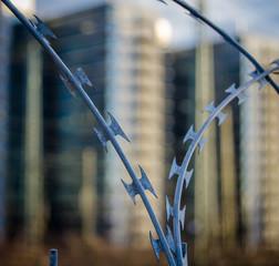 Urban Razor Wire