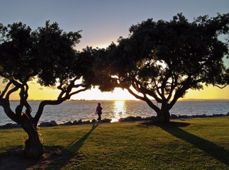 Silhouette of a woman walking at sunset, San Diego, California