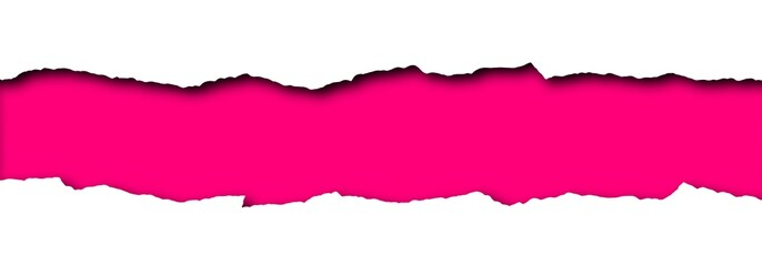 Torn paper with pink space for text isolated