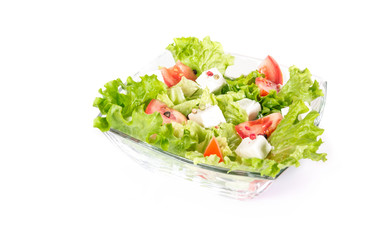 Salat isolated on white background
