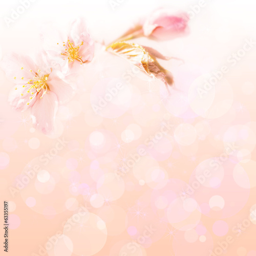 Spring flower background for design