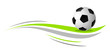 Zdjęcia na płótnie, fototapety, obrazy : fussball - soccer - 147