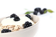 Oatmeal with yogurt and fresh organic blackberries. Shallow DOF
