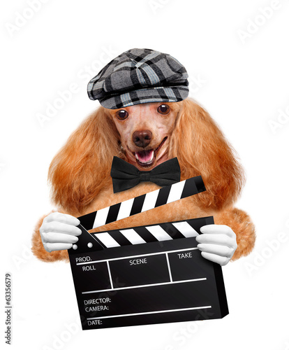Movie clapper board director dog.