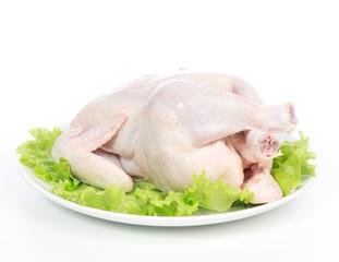 Raw crude fresh chicken on a plate garnished