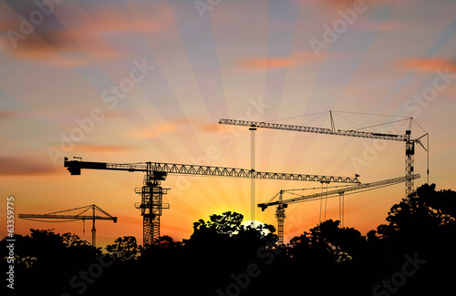 hoisting cranes above trees at sunset