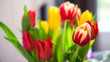 Bunch bouquet of colourful tulips close natural light