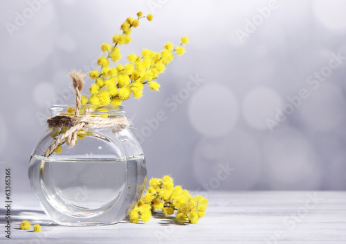 Twigs of mimosa flowers in vase on wooden table