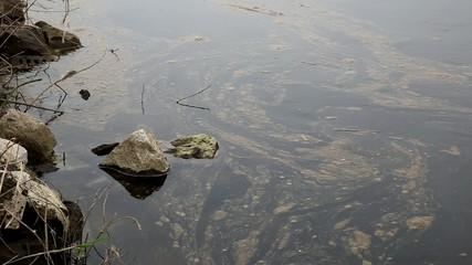 Verschmutztes Wasser