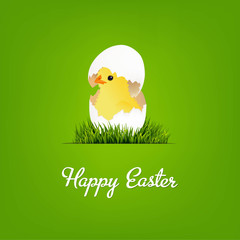 Happy Easter Card With Chicken