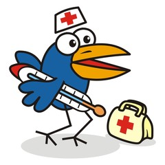 doctor - bird