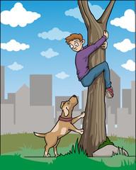 Boy hiding in a tree, afraid of a dog