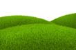 Green hill of grass