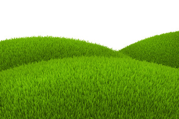 Green hill of grass