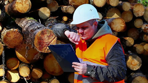 Forest employee with folder near logs