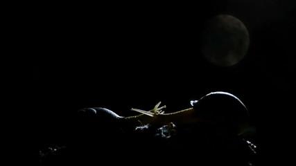 Caracoles con luna llena y nubes pasando