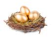 Gold Eggs - 63382990