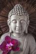 Постер, плакат: Visage Bouddha
