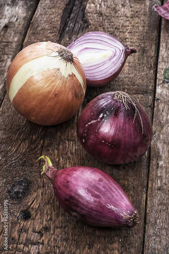 composition with vegetable aromatic spice-onions
