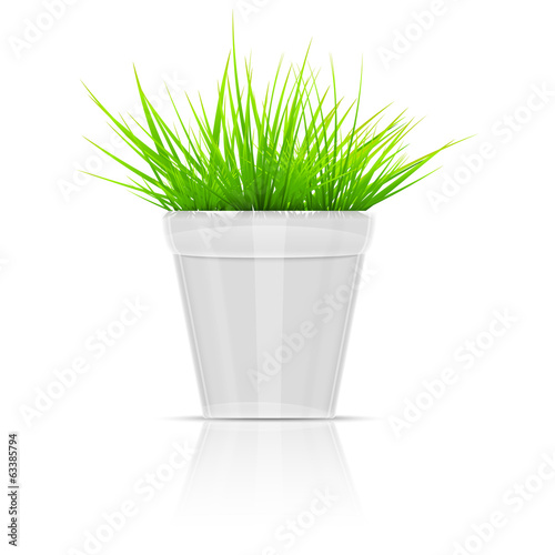 White Flowerpot With Green Grass.