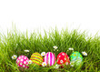 Easter Eggs with flower on Fresh Green Grass over white backgrou