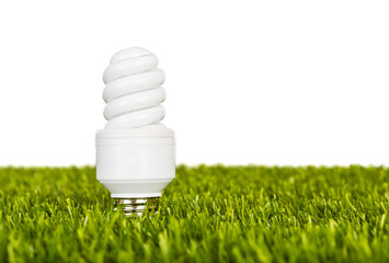Energy saving lamp in green grass