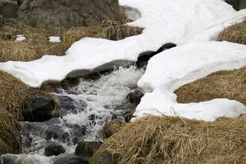 小川の雪解水