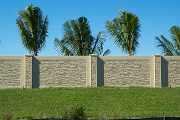 palm trees behind wall on top of hill