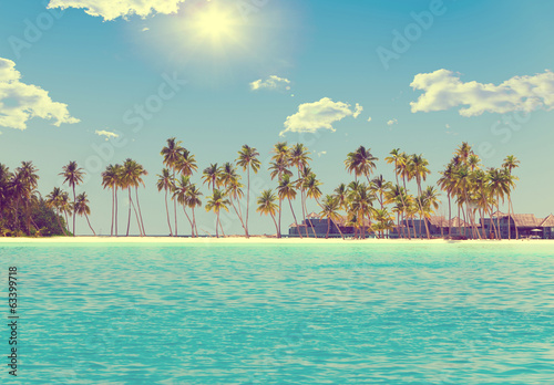 The island with palm trees in the ocean,with a retro effect