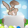 Easter Bunny with blank board for your text