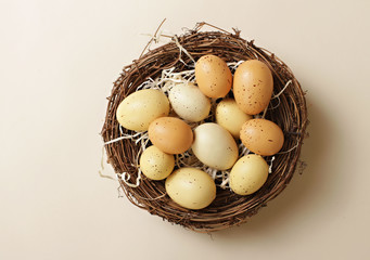 "Eggs in a Nest, ""Nest Egg"""
