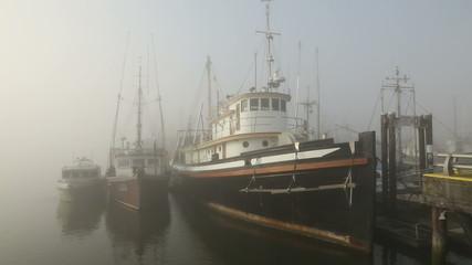 Steveston Marina, Morning Fog