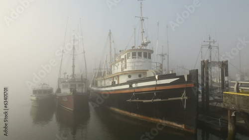 Steveston Marina, Morning Fog
