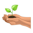 Hands and Plant on White Background. Vector