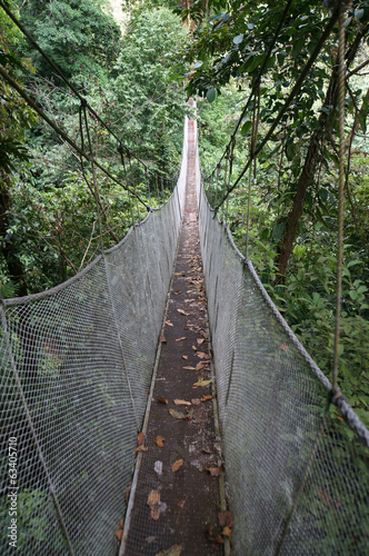 Aerial Walkway in Costa Rica