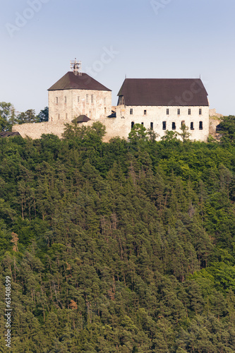 Tocnik castle, Czech Republic