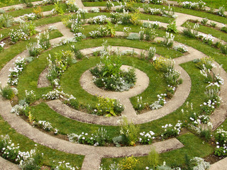 labyrinthe fleur