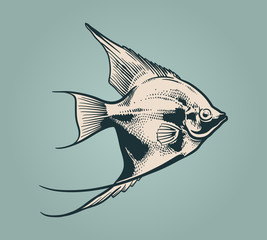 Vector vintage illustration of little fish over blue background