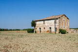 casolare su un terreno colticato in Italia poster