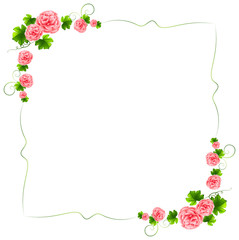 A border with carnation pink flowers