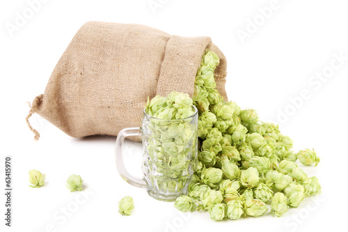 Sack of fresh hops.