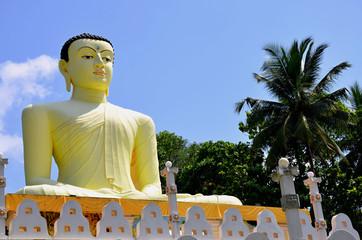 Statue of Buddha in  Sri Lanka