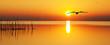 Leinwanddruck Bild - en busca del sol naciente