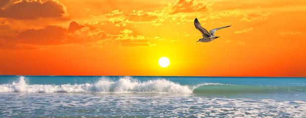amance en la playa de la gabiota