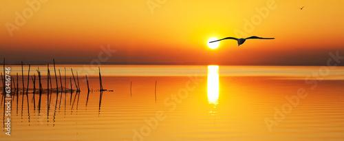 Leinwanddruck Bild en busca del sol naciente
