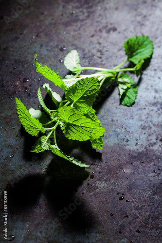 Sprig of fresh peppermint