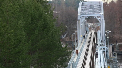 Pedestrians walking on footpath on a railroad bridge